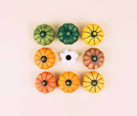 Decorative pumpkins on trendy beige background with fall leaves.
