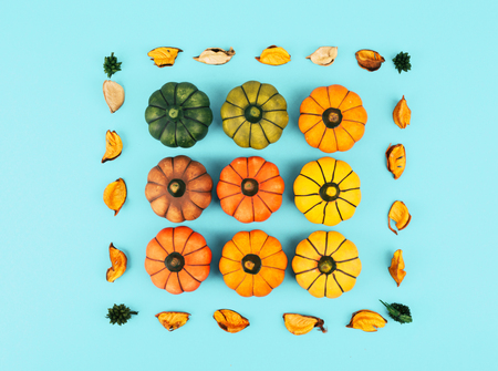 Decorative pumpkins on trendy blue background with fall leaves.