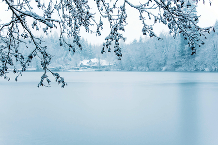 Frozen lake in snowy forest, close up. Black forest, Germany.