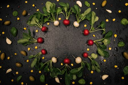 Fresh organic radish frame with vegetables on black background.