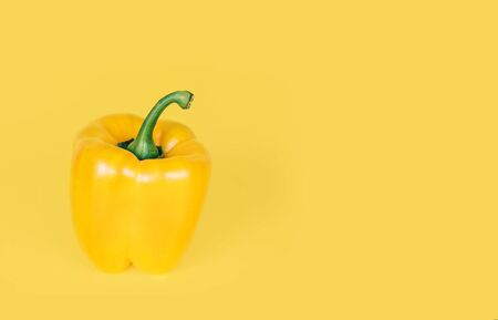 Yellow pepper on bright yellow background.