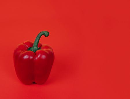 Red pepper on bright red background. Standard-Bild