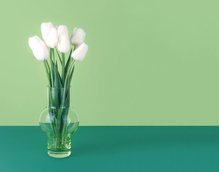 White tulips in a vase on a green background.