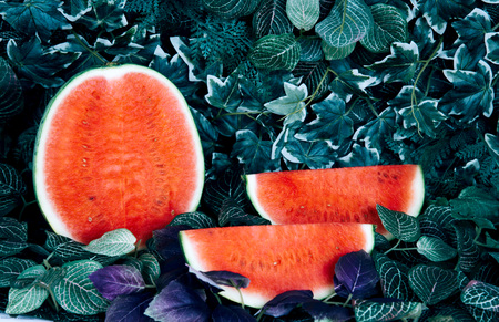Fresh ripe striped sliced watermelon on tropical background.