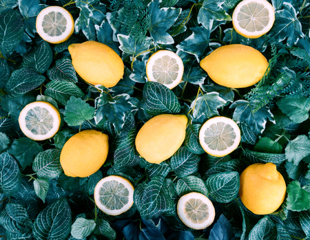 Citrus background. Assorted fresh lemon fruits with leaves. Top view