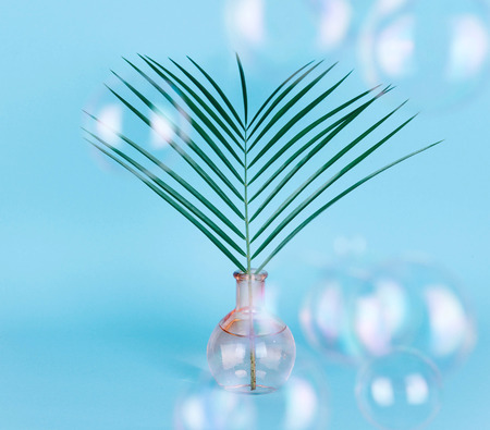 Minimal pure composition with palm leaf in a vase on pastel background. Creative minimal concept.