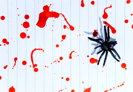 Black and white spiders on a white background covered with blood, Halloween. Kho ảnh