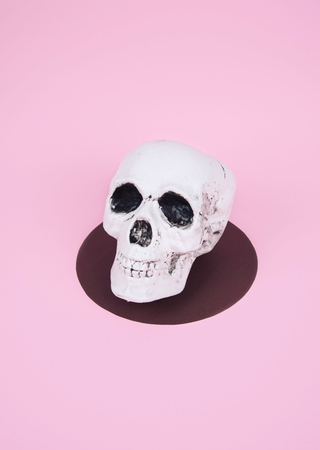 Skull on trendy pastel pink background. Creative Halloween concept. Kho ảnh