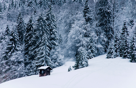 Beautiful winter landscape in the mountains. Cold weather, snow on hills in Black forest, Germany.