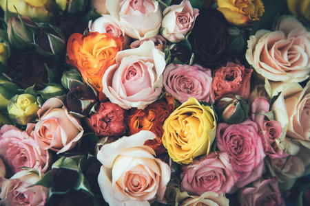 Pink, white and yellow roses background. Retro vintage filter.