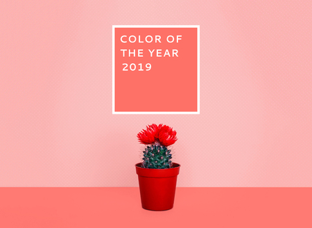 Small cactus in a flowerpot on a trendy background. Color of the year 2019.