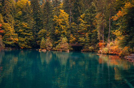 Autumn time at romantic forest lake Blausee, one of the best known mountain lakes in Switzerland.