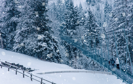 View of snow covered pine forest in Switzerland, Europe. Stock Photo