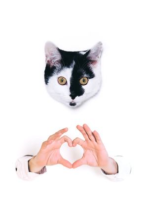 Young man forming shape of heart with his hands on white background. Stock Photo