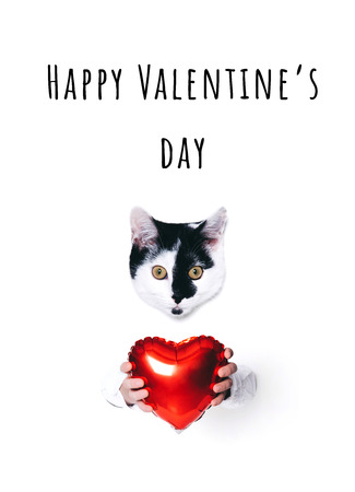 Cute cat holding a heart on white background. Minimal art style. Stock Photo