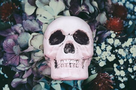 Skull at fairy dreamy magic flowers background. Halloween