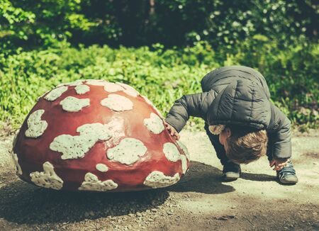 child looking up: boy child searching and seek for a miracle under a big mushroom Stock Photo