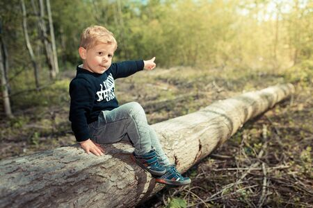 exploring: Little boy child lying on a tree chopped exploring the nature