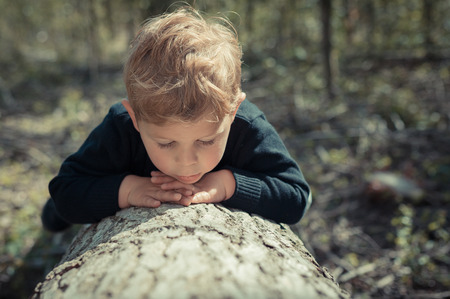 Little boy child lying on a tree chopped exploring the nature
