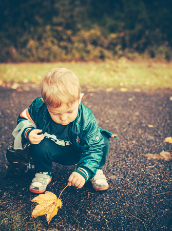 baby kid is playing outside in autumn. He has found a leaf. There is space for your own text. Stock Photo