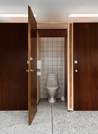Nice and clean public toilet with an open door of rosewood