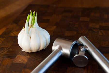Garlic bulb and metal press on a hard dark wooden surface. The garlic is in focus front and back is defocused