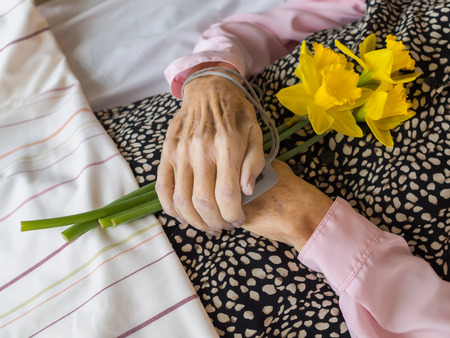 corpse flower: A dead woman with her hands folded on the stomach, holding daffodils