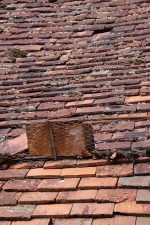 guard house: Very old roof of clay shingles with a snow guard of chicken wire, on a town house in France