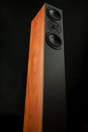 thundering: Tall loud speaker of cherry wood seen from frog perspective