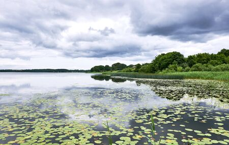 View over a calm lake Sjaelsoe in Birker�d Denmark, with low hanging gray clouds being reflected, and waterlilies floating in the  surface