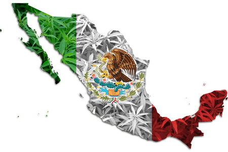 Mexico map with cannabis leaves background