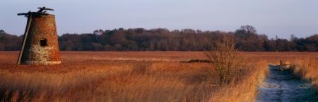 bomba de agua: Bomba de agua de pantanos Walberswick Suffolk en un formato panor�mico Foto de archivo