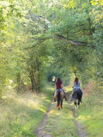 riding horse: Two girls ride horse bare back away from the camera down a leafy autumn lane.