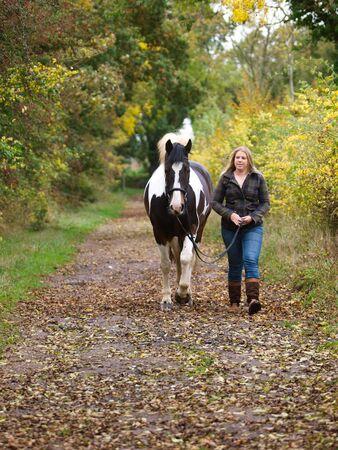 Een mooi meisje loopt met haar paard naar de camera. Stockfoto