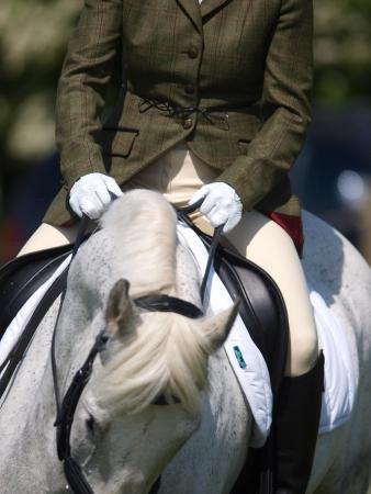 Een abstract shot van een paard tijdens een dressuurproef. Stockfoto