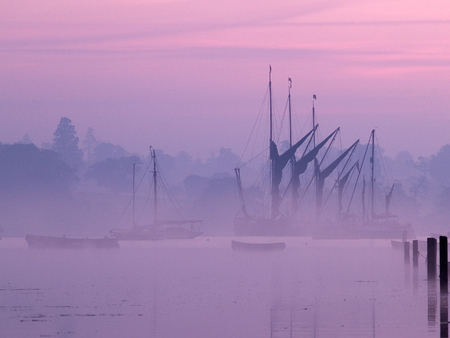 A group of restored historical sailing barges in the estuary in Suffolk