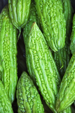 often: Bitter Gourd vegetable background  Also known as Muop Dang in Vietnam, this amazing looking vegetable has a bitter taste and is often served stuffed with meats and herbs  Stock Photo