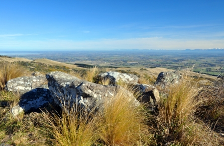 christchurch: A perfect Autumn day looking over the Canterbury plains from the top of the Port Hills  In the foreground are the native grasses and tussock, volcanic rocks and lichens, In the background are the Southern Alps  Christchurch, New Zealand