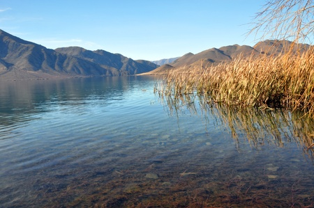 Lake Benmore in Autumn, Otago New Zealand  To the right are native Bullrushes called Raupo  Lake Benmore is man made and very popular for holidays and trout fishing  Stock Photo - 14003969
