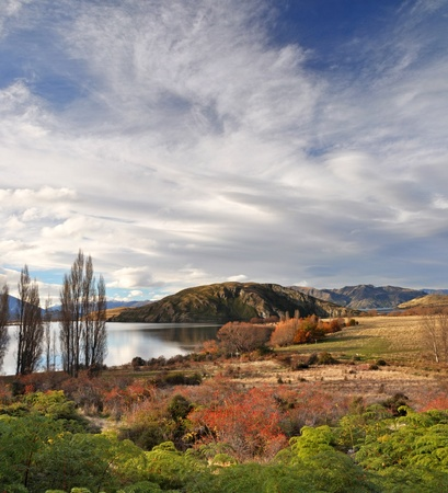 Vertical panoramic view of Lake Wanaka in Autumn  In the foreground are green native ferns and red wild Rose Hip bushes  In the background is a dramatic Norwest Sky with plenty of copy space  Central Otago New Zealand  photo