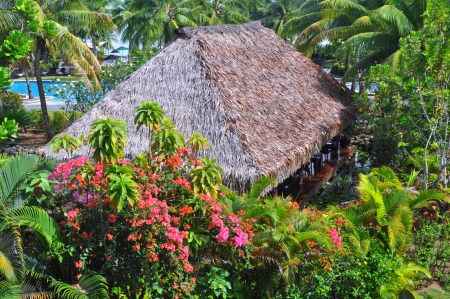 fijian: Fijian traditional grass hut set in resort tropical gardens with Hibiscus flowers and Palm trees. Editorial