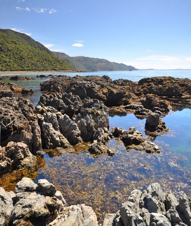 kaikoura: Vertical panoramic view of the rock pools of Kaikoura - a popular seal colony and whale watching tourist destination on the east coast of the South Island in New Zealand  Stock Photo