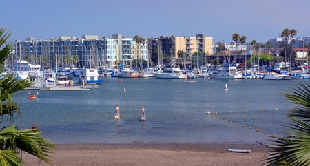 boarders: Los Angeles, USA - July 14, 2013  Paddle Boarders practicing at Marina Del Rey, Los Angeles, USA