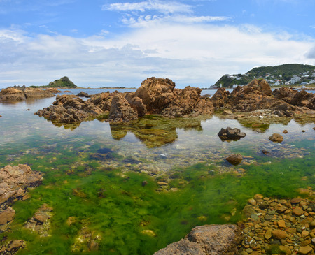 wellington: Closeup and Panoramic view of Island Bay, Wellington  New Zealand