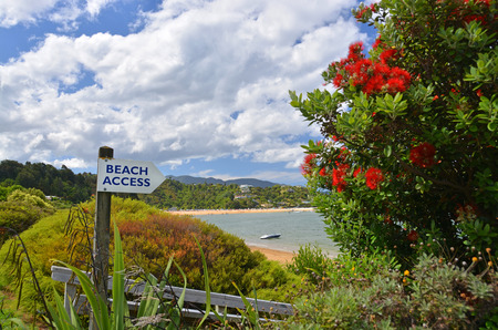 new zealand flax: This way to Paradise  Beach Access Sign at Kaiteriteri Beach, New Zealand  Stock Photo