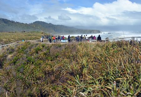 new zealand flax: Punakaiki, New Zealand - October 31, 2014: Tourists Taking Photos at Punakaiki Rocks on the West Coast. Editorial