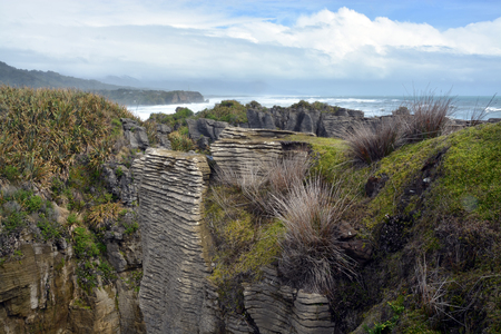 new zealand flax: Looking South From the Punakaiki Rocks towards Greymouth on the West Coast of New Zealand. Stock Photo