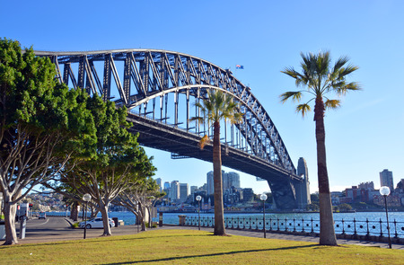 sydney harbour: Sydney Harbour Bridge  Palm Trees from Dawes Point Park in The Rocks District, Australia. Editorial