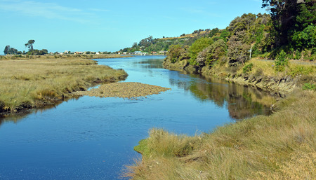 whitebait: Collingwood River landscape with copy space. This river is very popular with Whitebait fishermen. In the background is the township of Collingwood.