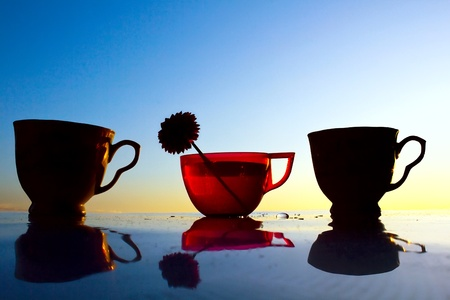 Silhouette of a red transparent cup with a flower and two opaque cups against the evening blue sky Stock Photo
